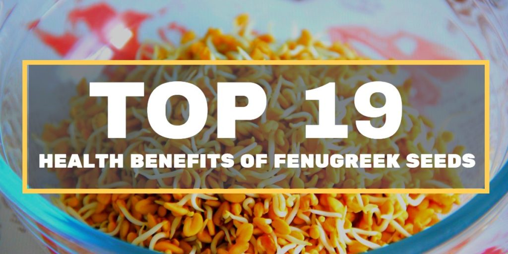 fenugreek seeds health benefits